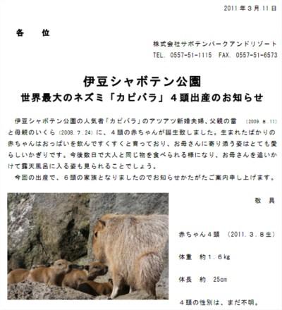 伊豆シャボテン公園 カピバラ出産のお知らせのプレスリリースのキャプチャ画像
